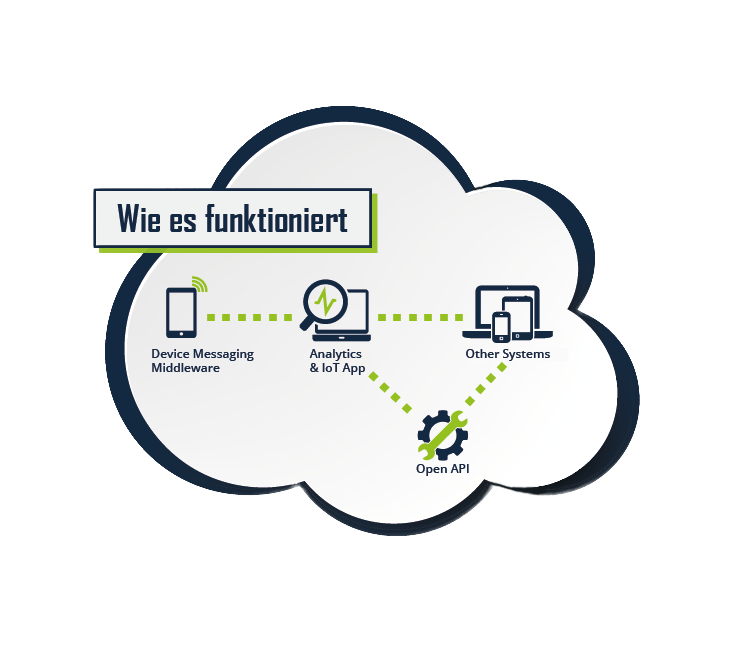 IoT Software Funktion